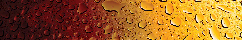 Pinnacle Capital Group - Brewery Finance